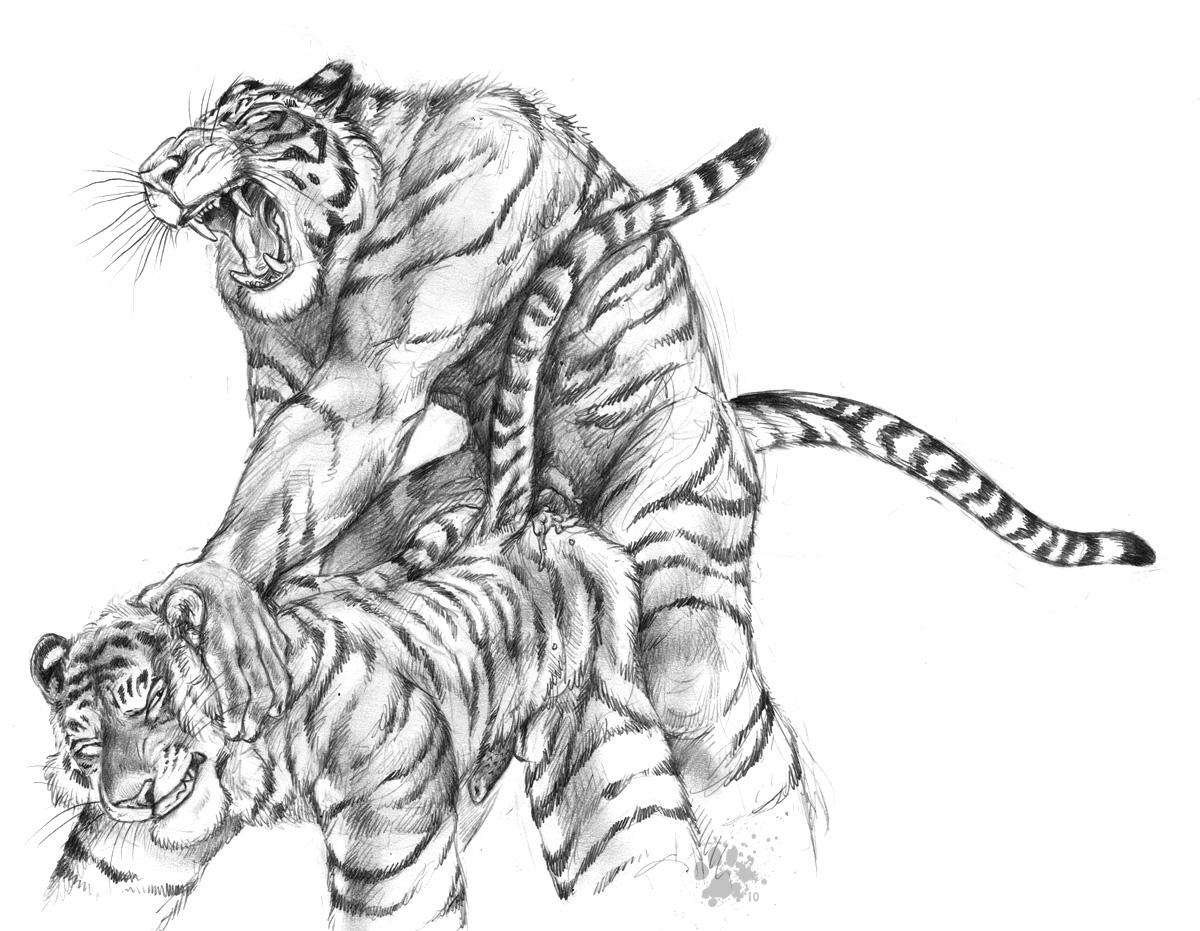 tigri-ebutsya